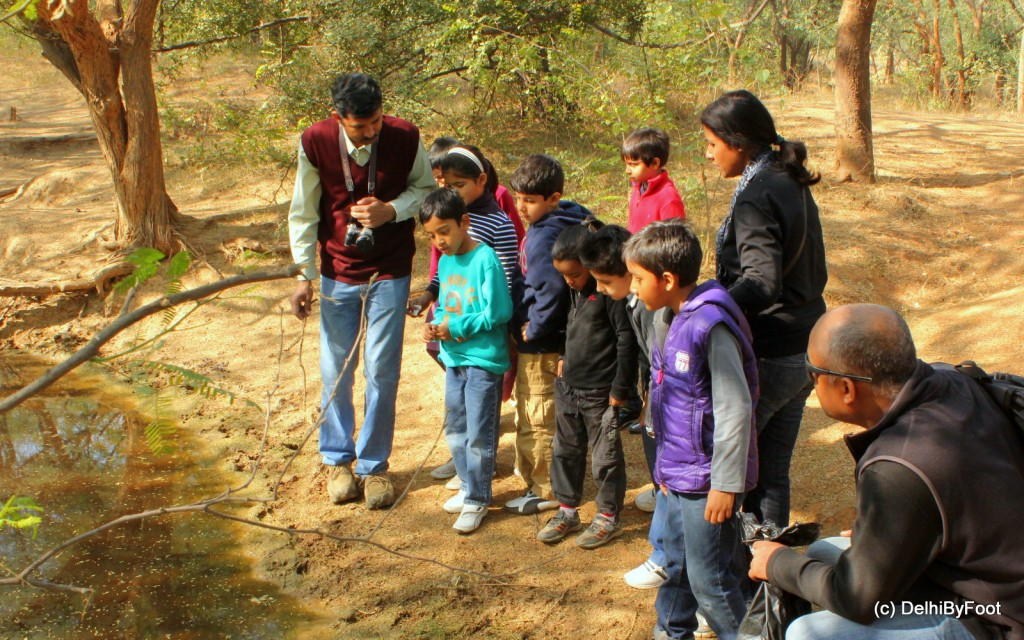 The Naturalist explaining about the water eco-system