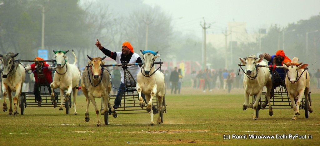 Kila Raipur Sports Fest 2014